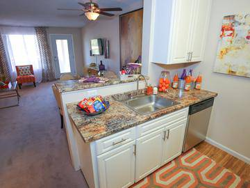 Updated Kitchen - Level 550 - Mesa, AZ