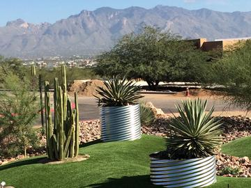 Lush Landscaping - The Ledges at West Campus - Tucson, AZ