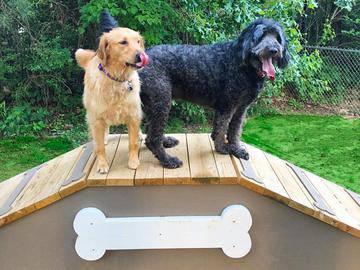Dog Park - Wellington at Chenal - Little Rock, AR