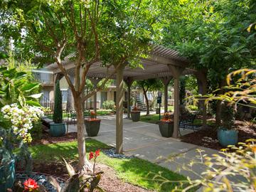 Pavilion - Abby Creek Apartment Homes - Carmichael, CA