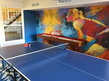 Ping Pong Table - Cambridge House - Davis, CA