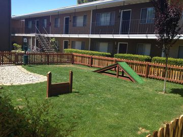 Dog Park - Cambridge House Apartments - Davis, CA