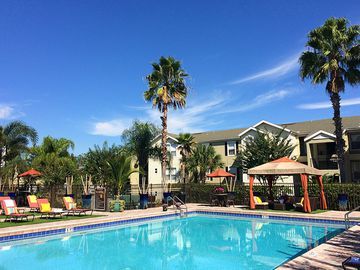 Resort-Style Swimming Pool - Ashton Chase - Clermont, FL