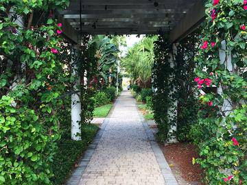 Walkway - The Laurels Apartment Homes - Fort Myers, FL