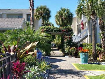 Lush Landscaping - The Laurels Apartment Homes - Fort Myers, FL