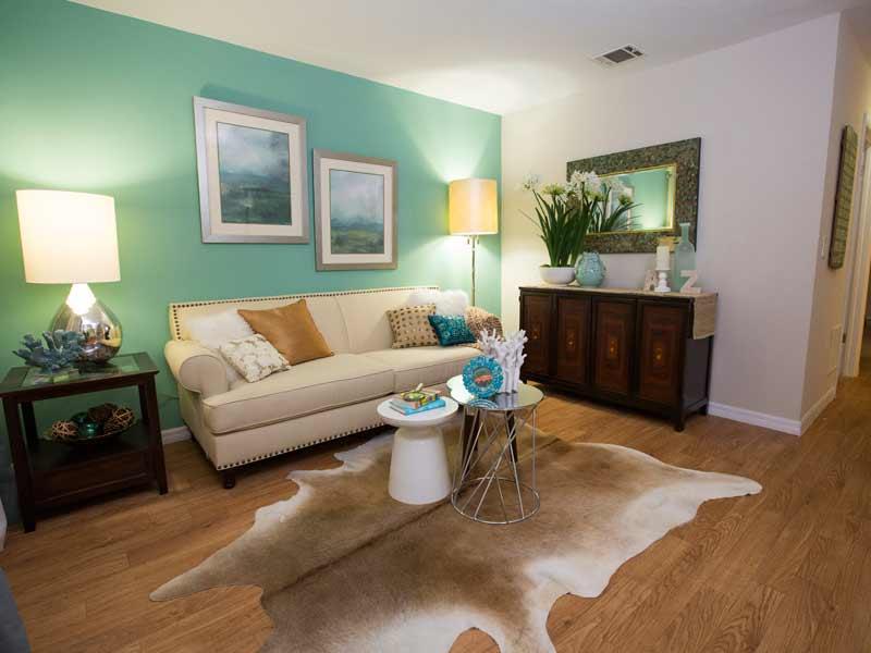 Apartment Photos Videos Living Room Furniture Gainesville Fl
