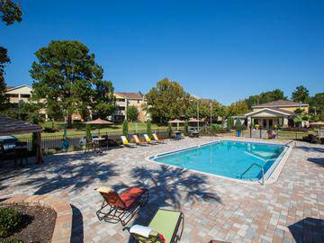 Resort-Style Pool - Ridgemar Commons - Gainesville, FL