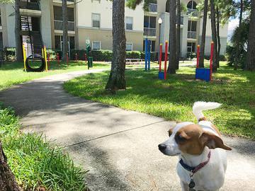 Dog Park - Banyan Bay - Jacksonville, FL
