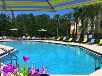 Resort-Style Swimming Pool - Deer Meadow - Jacksonville, FL