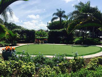 Putting Green - The View at Waters Edge - Lantana, FL