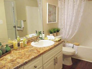 Guest Bathroom - River Reach - Naples, FL