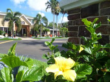 Leasing Office - Somerset Palms - Naples, FL