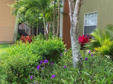 Lush Landscaping - Somerset Palms - Naples, FL