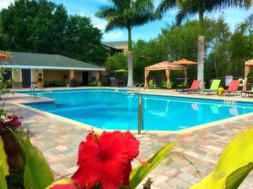 Resort-Style Swimming Pool - Somerset Palms - Naples, FL