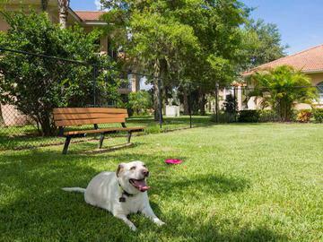Dog Park - Toledo Club - North Port, FL