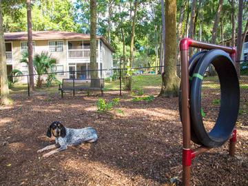 Dog Park at Carrington Lane - Carrington Lane - Ocala, FL