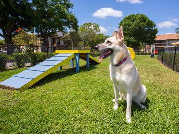 Bark Park - Adele Place - Orlando, FL