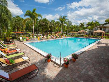 Sparkling Swimming Pool - Adele Place - Orlando, FL