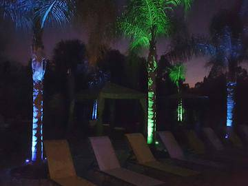Pool at Night - Pine Lake - Palm Coast, FL