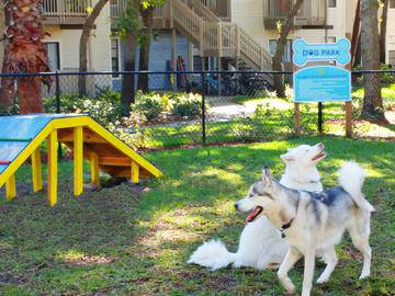 Dog Park - Stillwater Palms - Palm Harbor, FL