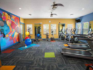Fitness Center - Stillwater Palms - Palm Harbor, FL