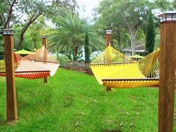 Hammock Garden - Stillwater Palms - Palm Harbor, FL
