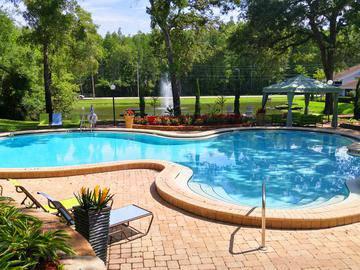 Sparkling Swimming Pool - Stillwater Palms - Palm Harbor, FL