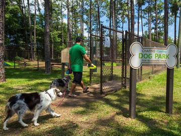 Dog Park - Chapins Landing - Pensacola, FL