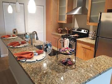 Updated Granite Countertops - Preserve at Alafia - Riverview, FL