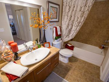 Bathroom - Preserve at Alafia - Riverview, FL