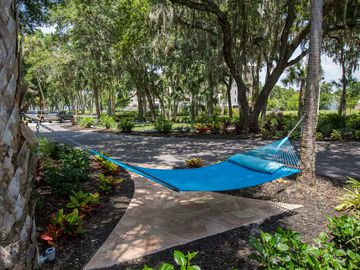Hammock - Preserve at Alafia - Riverview, FL