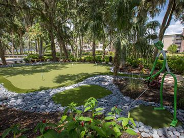 Putting Green - Preserve at Alafia - Riverview, FL