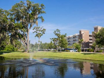 Preserve/Lake Views - Preserve at Alafia - Riverview, FL