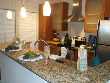 Updated Granite Countertops - Preserve at Alafia - Riverview, FL