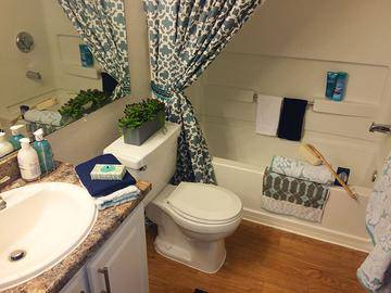 Updated Bathrooms - Sienna Square - Tallahassee, FL