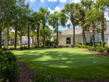 Putting Green - The Oasis at 1800 - Tallahassee, FL