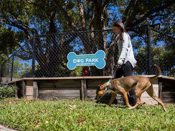 Off-Leash Dog Park - Allister Place - Tampa, FL