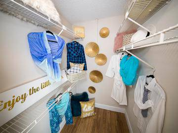 Walk-In Closet - Allister Place - Tampa, FL