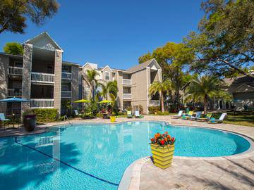 Sparkling Swimming Pool - Allister Place - Tampa, FL