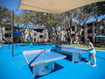 Ping Pong Tables - Allister Place - Tampa, FL
