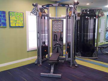Weight Training - Allister Place - Tampa, FL