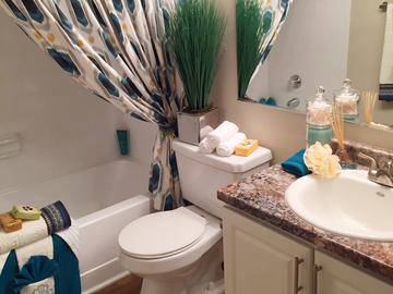 Remodeled Bathroom - Allister Place - Tampa, FL