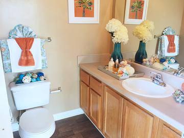 Master Bathroom - Peaks at Bells Ferry - Acworth, GA
