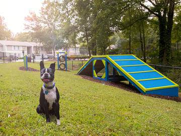 Dog Park - Village West at Peachtree Corners - Norcross, GA