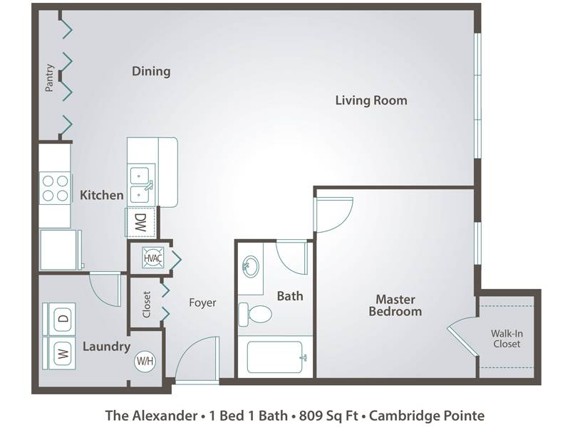 The Alexander - 1 Bedroom / 1 Bathroom Image