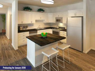 New 4 Bedroom Kitchen - Alpine Commons - Amherst, MA