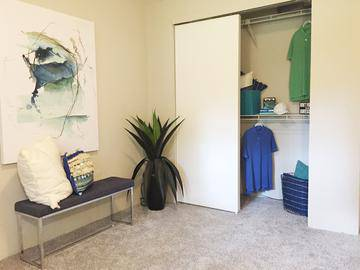 Bedrooms with Spacious Closets - Alpine Commons - Amherst, MA