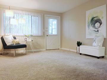 4 Bedroom Living Room - Alpine Commons - Amherst, MA