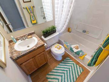 Bathroom - Collins Crossing - Carrboro, NC