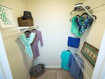 Walk-In Closet - Collins Crossing - Carrboro, NC